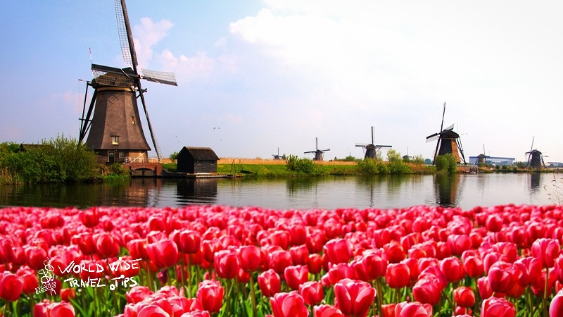 5 reasons why spring is the best time of year to visit Netherlands