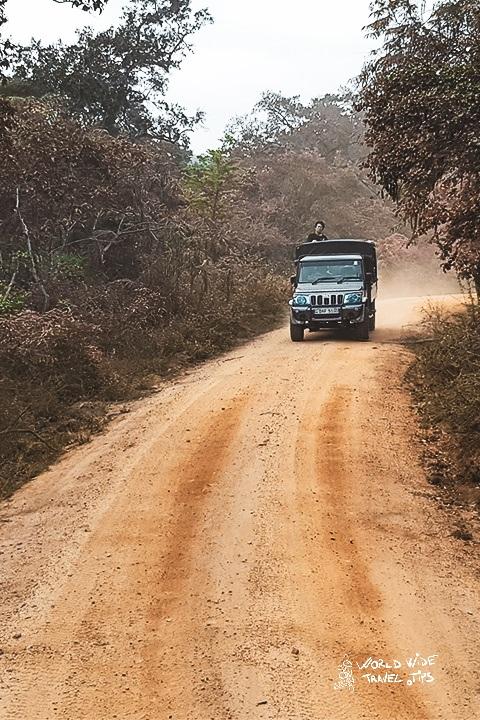 The ultimate guide to Minneriya National Park Sri Lanka
