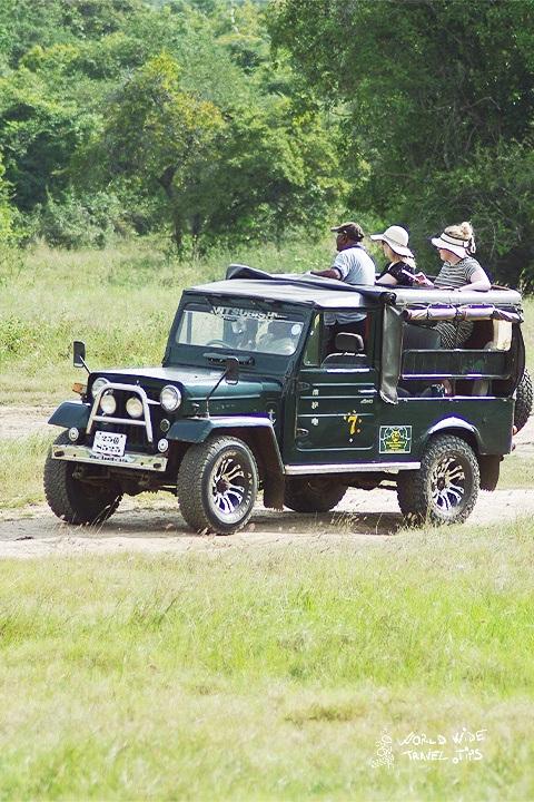 Ultimate guide to Minneriya National Park visit Sri Lanka