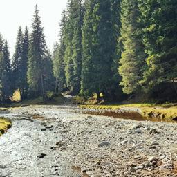 Visit Romania in Spring River