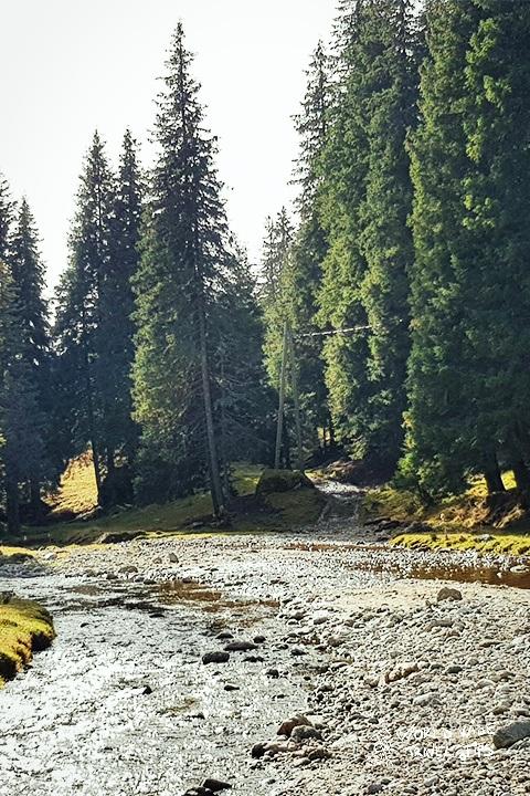 Visit Romania in Spring