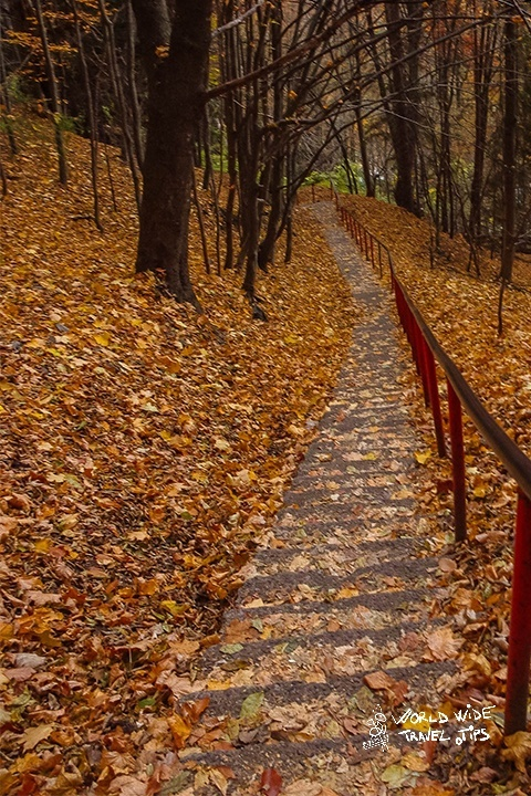 Autumn in Transylvania Romania