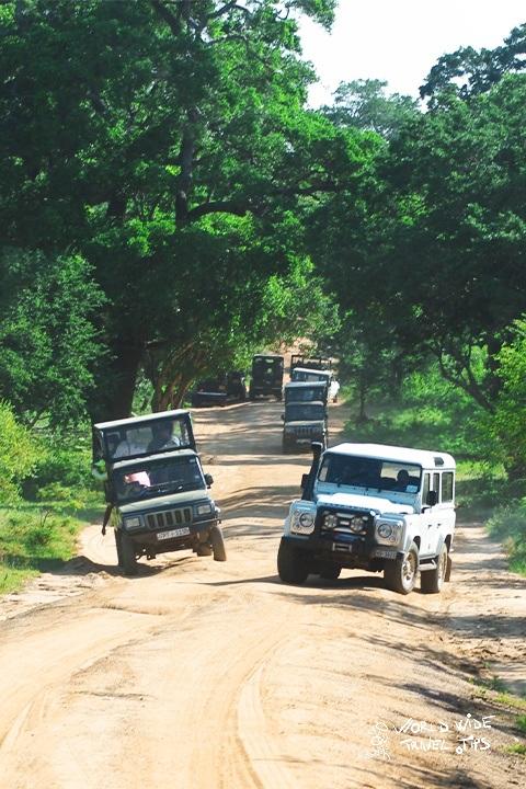 Sri Lanka Yala National Park Safari Jeep