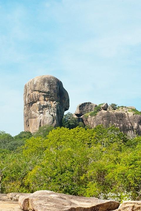 Yala National Park Hambantota Sri Lanka