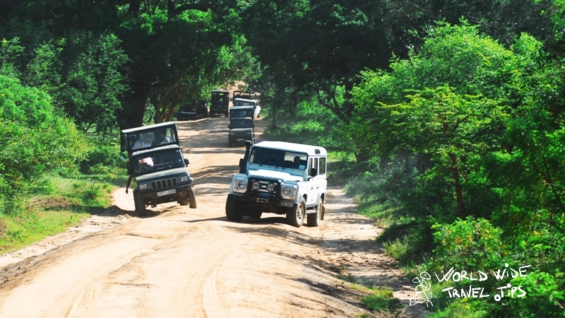 travel tips for Yala National Park Sri Lanka