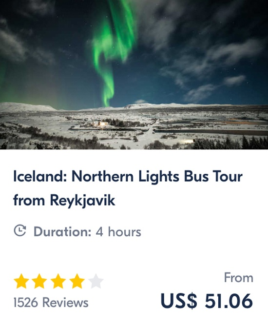 Iceland Northern Lights Bus Tour from Reykjavik