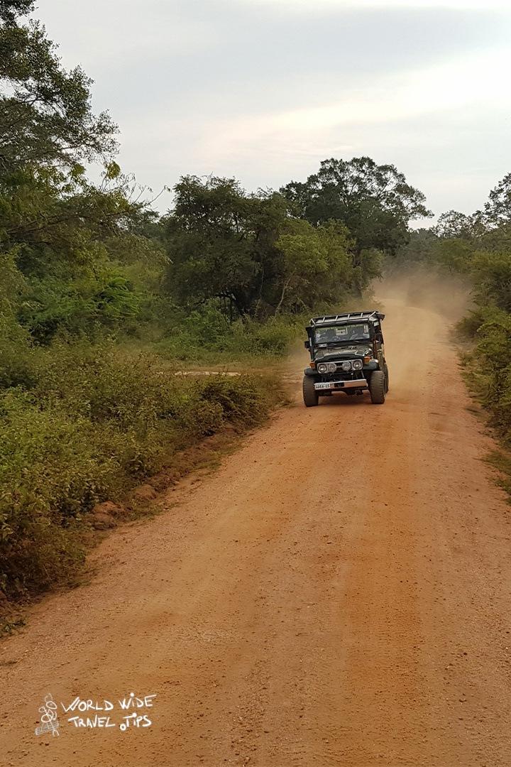 Udawalawe National Park Sarafi Sri Lanka