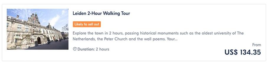 Leiden 2-Hour Walking Tour