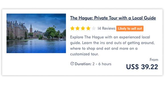 The Hague Private Tour with a Local Guide