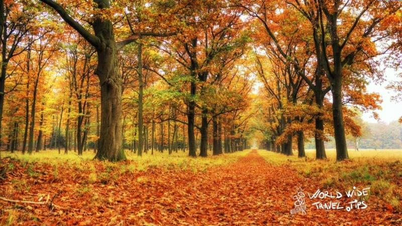 Explore Netherlands Hoge Veluwe