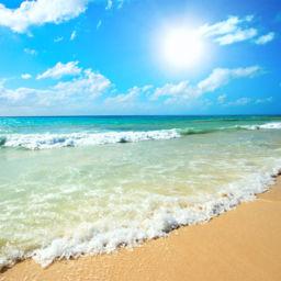 Sunny Beach Bulgaria beaches