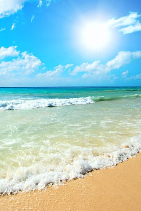 Bulgarian Beach Sunny Beach