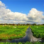 travel tips for Netherlands countryside
