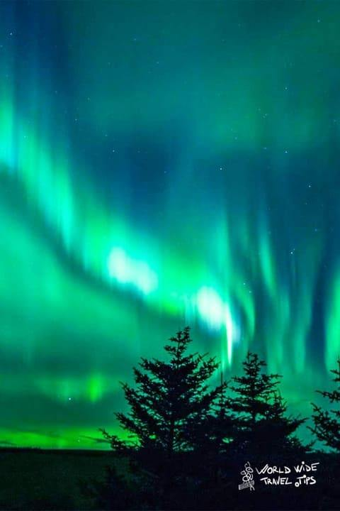 What is the aurora borealis Northern Lights