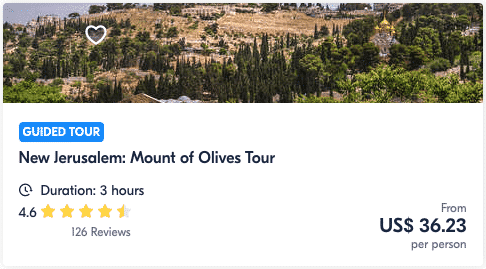 New Jerusalem Mount of Olives Tour Israel