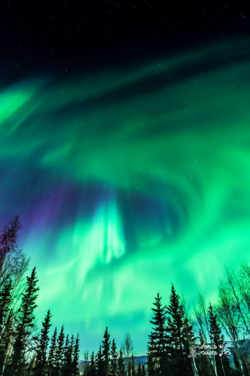 Aurora Borealis in Alaska Purple Green