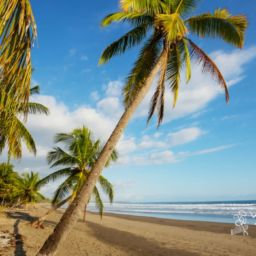Nacascolo Beaches in Costa Rica Beach