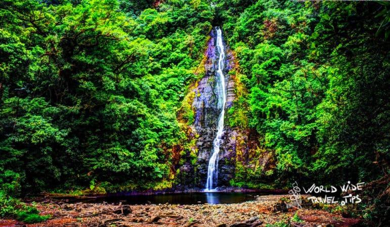Bajos Del Toro cloud forest in Costa Rica