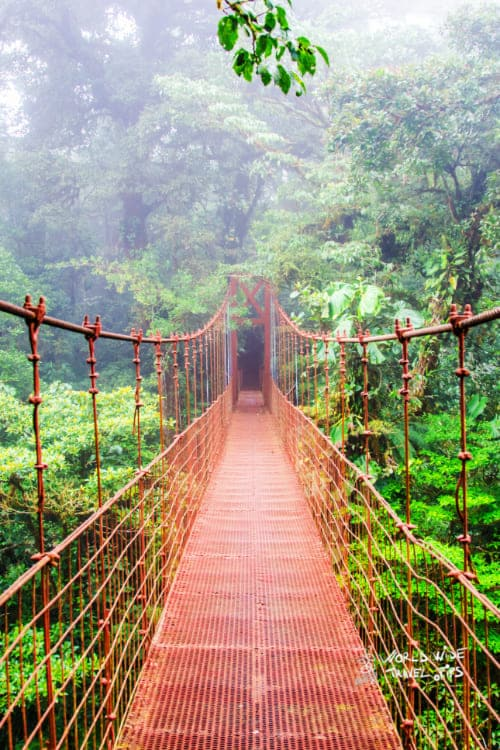 Bridge in Monteverde rainforest in Costa Rica