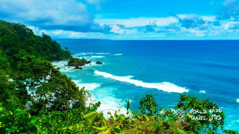 Corcovado National Park Jungles in Costa Rica