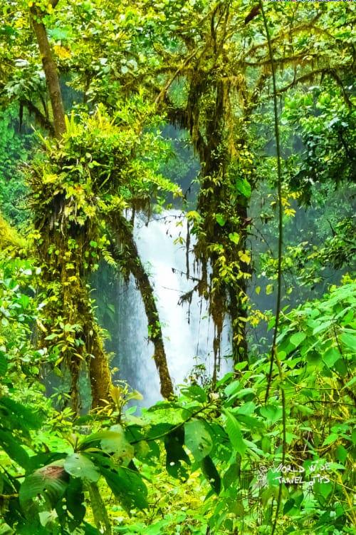 Costa Rica Waterfall La Paz Gardens Cloud Forest