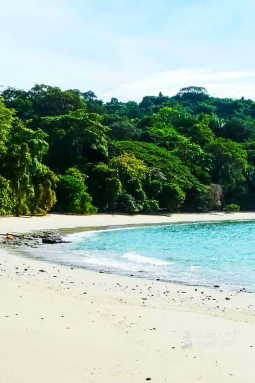 Jungles in Costa Rica Manuel Antonio National Park
