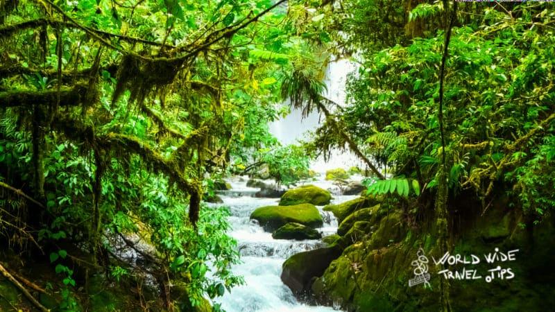 La Paz waterfall gardens Costa Rica Cloud Forest