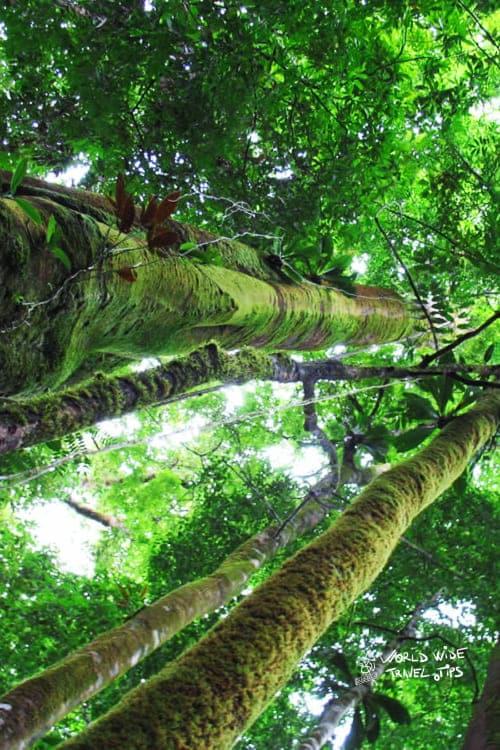 Piedras Blancas Costa Rica