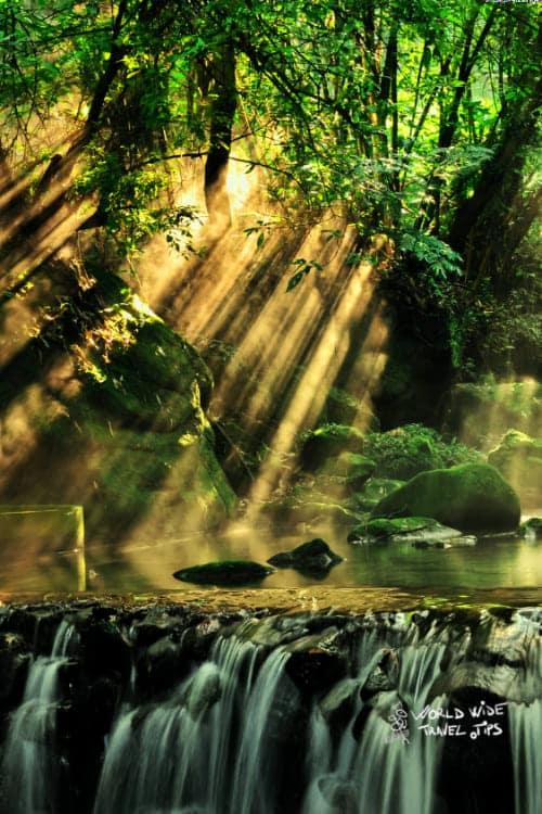 Waterfalls of Costa Rica Rainforest