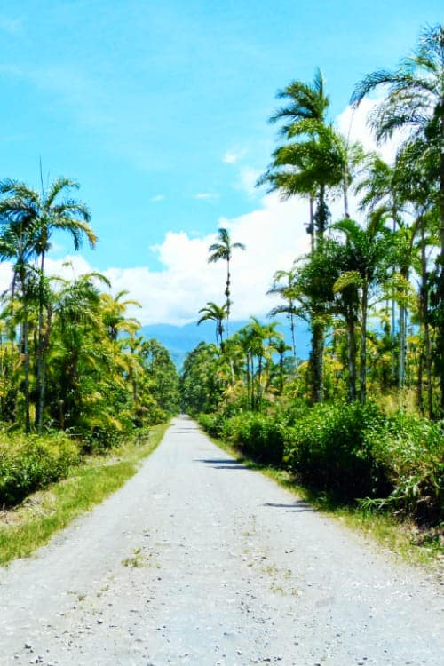 Costa Rica best time to go