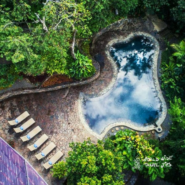 Monteverde Lodge and Gardens Pool Jungle