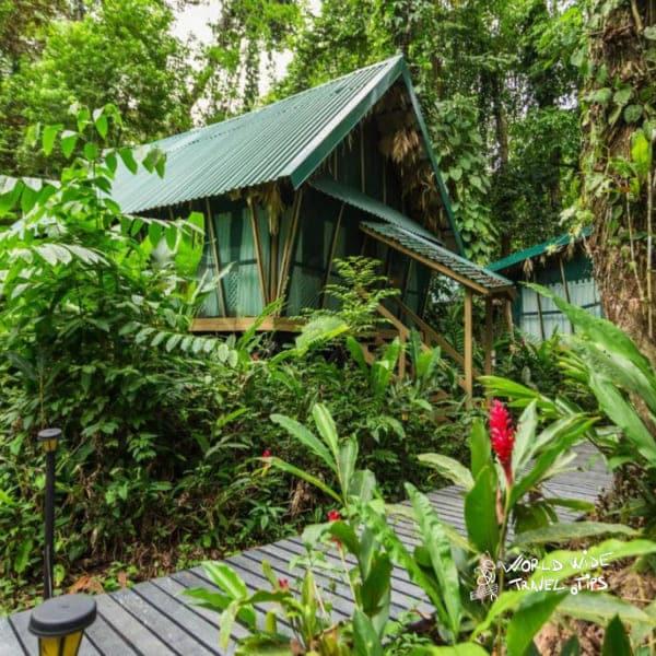 Almonds and Corals Costa Rica